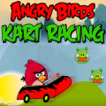 Help the Angry Birds drive thru each level! Be sure to get the Piggies.