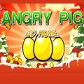Help the Angry Pigs avoid the difficulties and get home succesfully!