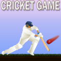 Test your batting skills as you aim for the targets!