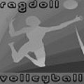 Play volleyball with a ragdoll ... what is next?